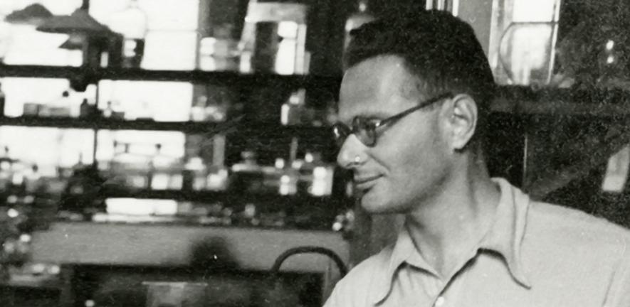 Hans Adolf Krebs, c1934