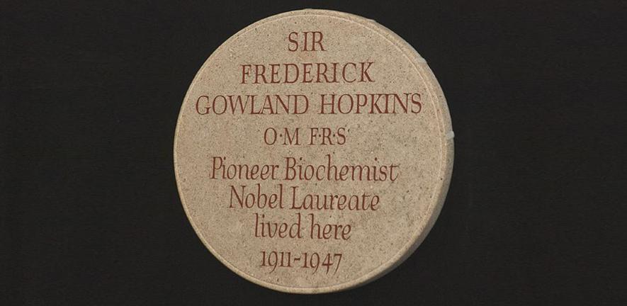 The Hopkins commemorative plaque
