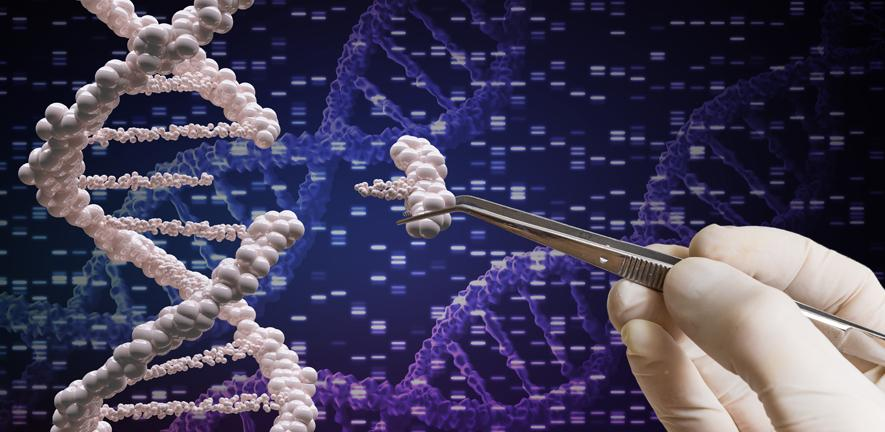 An artist's impression of DNA editing